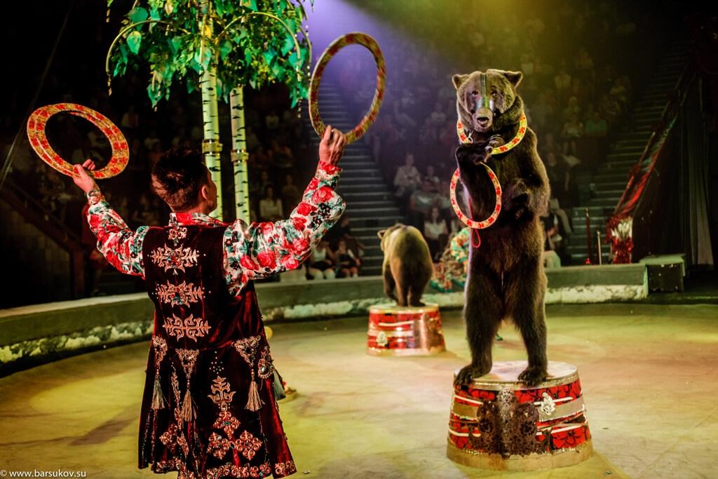 Цирк воронеж как купить билеты онлайн учебный театр на моховой купить билеты